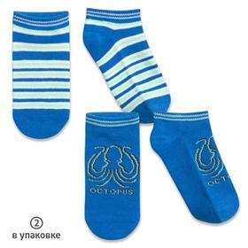 Носки для мальчиков, размер 16-18 см, цвет микс, лазурный, 2 пары