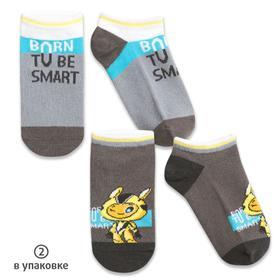 Носки для мальчиков, размер 16-18 см, цвет серый, 2 пары
