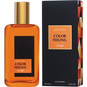 Туалетная вода мужская Color Feeling Orange, 100 мл