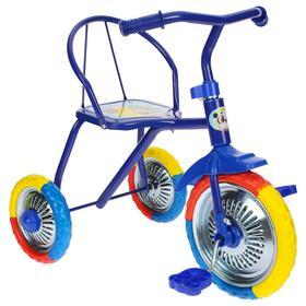 Велосипед трёхколёсный Micio TR-313, колёса 10'/8', цвет синий Ош