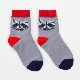 Носки детские, цвет серый, р-р 14-16 см