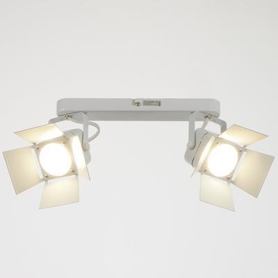 Светильник 5.0315-2, 2х50Вт GU5.3, цвет белый
