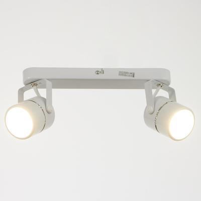 Светильник 5.0215-2, 2х50Вт GU5.3, цвет белый