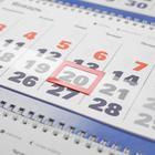 """Календарь квартальный, трио """"Символ года - 19"""" 2022 год, 31 х 69 см - Фото 3"""