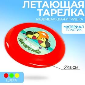 Летающая тарелка «Лови мой summer vibe», 18 см, цвета МИКС Ош