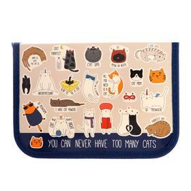 Пенал 1 секция 130*190 лам.карт ПКК 04- 5 Cats life 60939