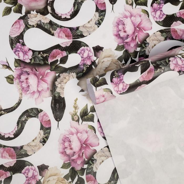 Бумага упаковочная крафтовая Змеи, 50 70 см