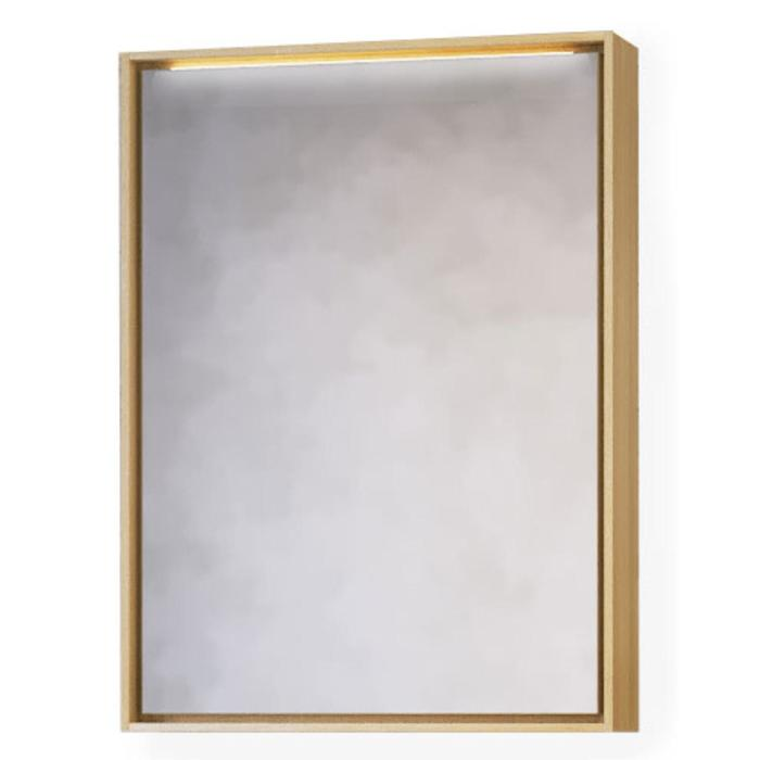 """Зеркало-шкаф """"RAVAL Frame 60"""" дуб сонома с подсветкой, розеткой 18х62х83см"""