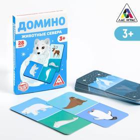 Развивающая игра «Домино. Животные севера», 3+ Ош