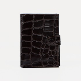 Обложка для автодокументов и паспорта, отдел для купюр, скат, цвет коричневый Ош