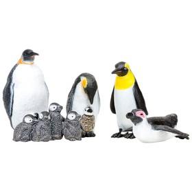 Набор фигурок: семья пингвинов, 5 предметов