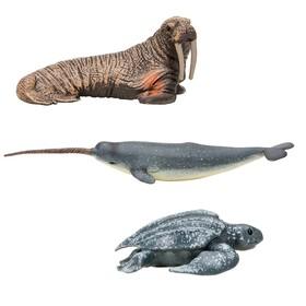 Набор фигурок: нарвал, кожистая черепаха, морж , 3 предмета