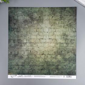 """Бумага для скрапбукинга Mr.Painter """"Вокруг меня Хаки 3"""" 30,5x30,5 см, 190 гр/м2"""