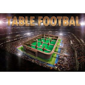 Деревянный 3D конструктор «Настольный футбол»