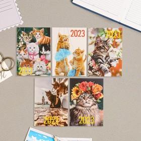 Карманный календарь 'Коты - 3' 2022 год, 7 х 10 см, МИКС Ош