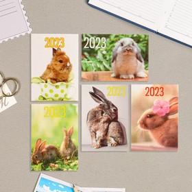 Карманный календарь 'Символ года - 2' 2022 год, 7 х 10 см, МИКС Ош