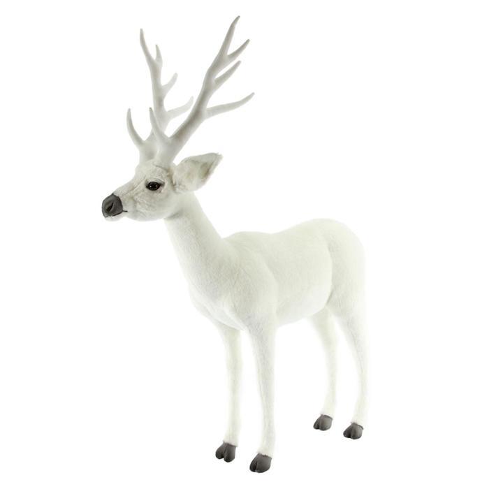 Белохвостый олень, 100 см