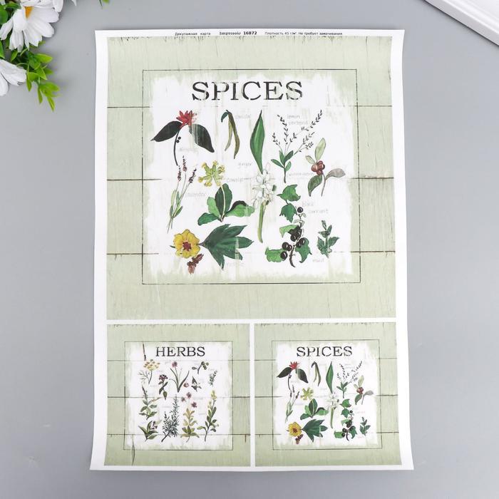 "Декупажная карта ""Spices"" плотность 45 г/м2, формат А4"