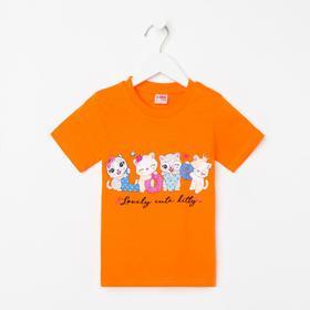 Футболка для девочки, цвет оранжевый/кошечки, рост 98 см