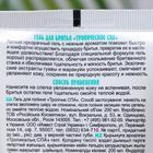 Гель для бритья Батист тропическое СПА, 200 мл - Фото 2
