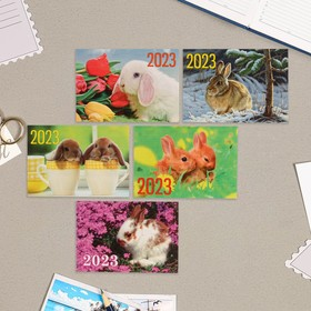 Карманный календарь 'Символ года - 7' 2022 год, 7 х 10 см, МИКС Ош