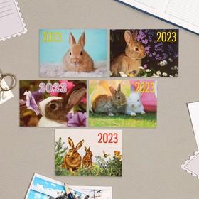 Карманный календарь 'Символ года - 8' 2022 год, 7 х 10 см, МИКС Ош