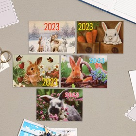 Карманный календарь 'Символ года - 9' 2022 год, 7 х 10 см, МИКС Ош