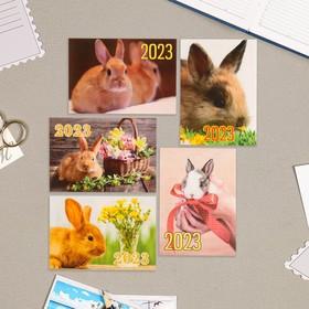 Карманный календарь 'Символ года - 10' 2022 год, 7 х 10 см, МИКС Ош
