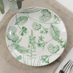 Тарелка «Гербарий листья», d=18,5 см