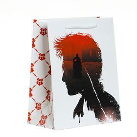 Пакет подарочный «Гарри Поттер», 180х227х100 мм