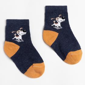Носки детские, цвет тёмно-синий, размер 12-14