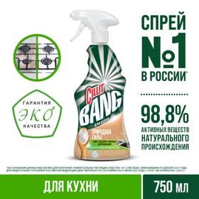 """Чистящее средство для кухни Cillit Bang """"Природная сила с содой"""" 450мл"""