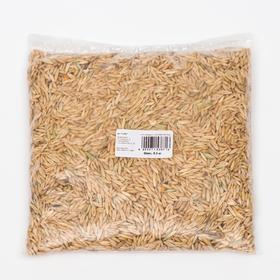 Семена Овес СТМ, 0,5 кг Ош