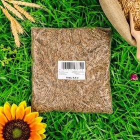 Семена Рожь СТМ, 0,5 кг Ош
