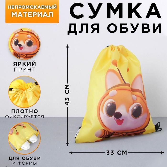 Болоневая сумка для обуви «Давай дружить», 33х43х0,5 см
