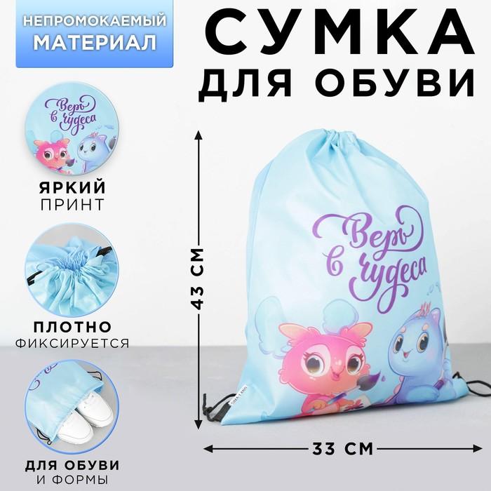 Болоневая сумка для обуви «Счастье есть», 33х43х0,5 см