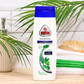 Шампунь для волос «Знахарь» Power, блеск и сила, 400 мл