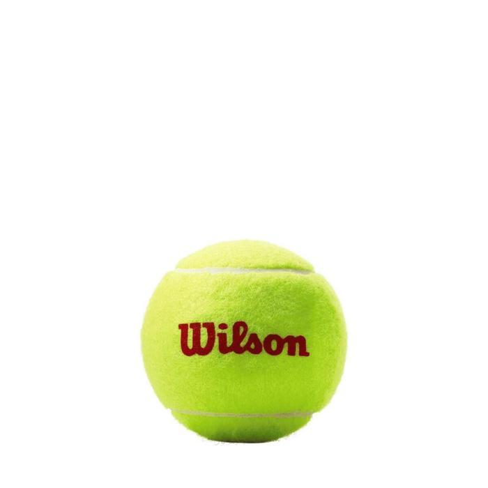Мячи теннисные ROLAND GARROS 3 BALL RD