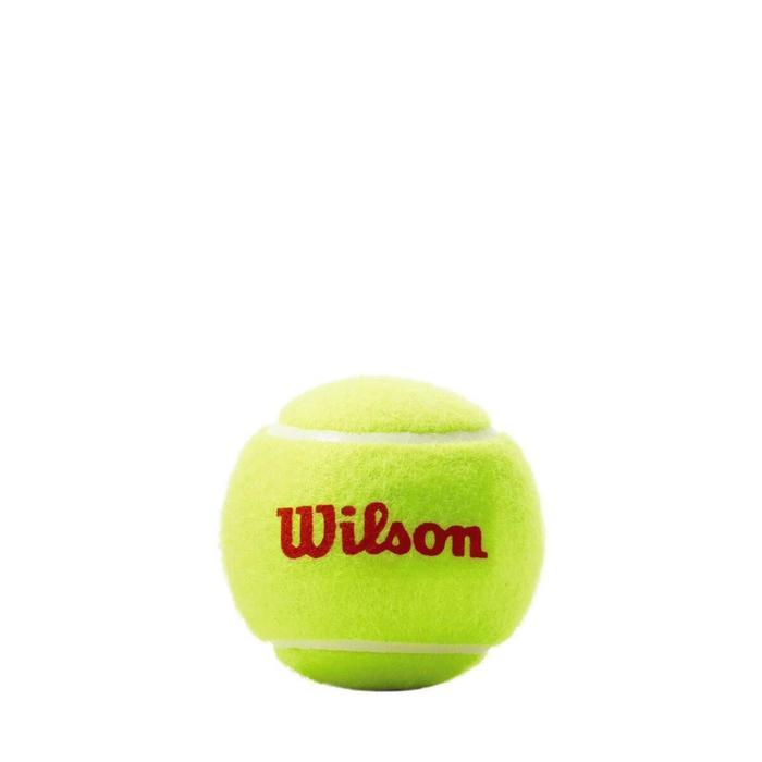 Мячи теннисные ROLAND GARROS 3 BALL OR