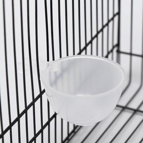 Миска для грызунов и птиц, 30 мл, прозрачная Ош
