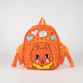 Рюкзак детский, отдел на молнии, наружный карман, 2 боковых кармана, цвет оранжевый Ош