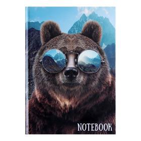 """Колледж-тетрадь А5, 64 листа в клетку """"Медведь в очках"""", твёрдая обложка, глянцевая ламинация, блок офсет"""
