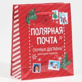 Пакет ламинированный вертикальный «Полярная почта», S 12 × 15 × 5,5 см