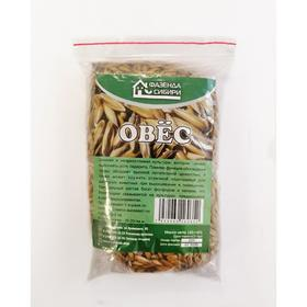 Семена Овес ФС, 150 гр Ош
