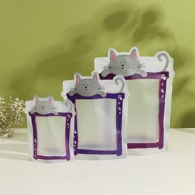 Набор пакетов для хранения сыпучих продуктов, 3 шт, 17×23,5 см, 13,7×19 см, 11×14,5 см, застёжка zip-lock