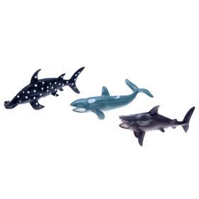 Набор морских животных «Хищники», 3 штуки