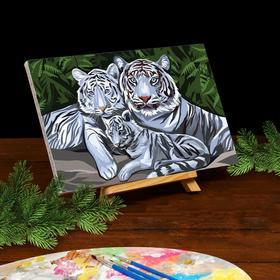 Картина по номерам на холсте с подрамником «Белые тигры» 20х30 см