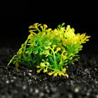 Растение искусственное аквариумное, 5 см