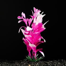 Растение искусственное аквариумное, 10 см Ош