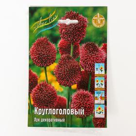 Аллиум лук декоративный Круглоголовый, р-р 6/+, 10 шт Ош